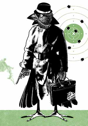 detective-cuckoo
